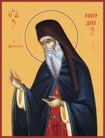 Никодим Святогорец, преподобный, икона (арт.00052)