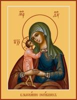 Взыскание погибших икона Божией Матери (арт.06289)
