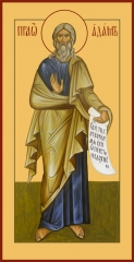 Адам праотец, икона (арт.06466)
