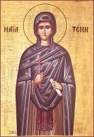 Ксения Миласская преподобная, икона (арт.06876)